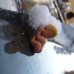 requiem-per-il-ghiaccio-morente_2330316401_o